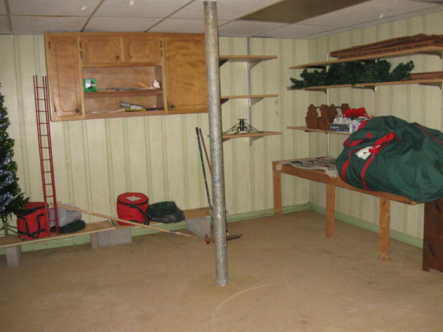 Storage in Basement