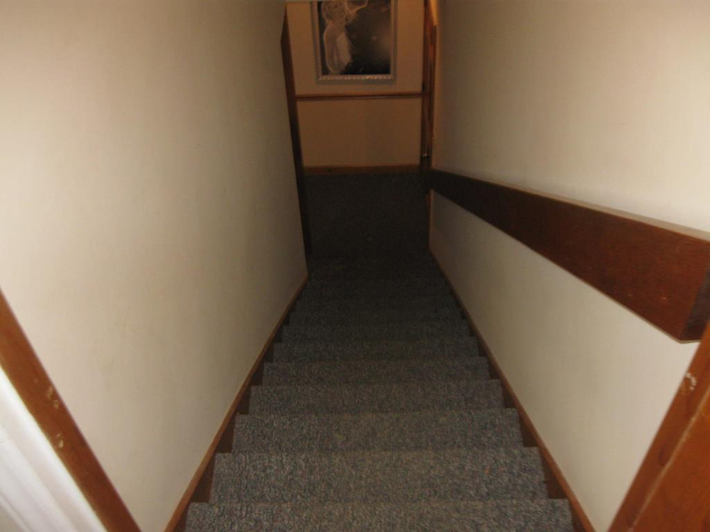 Basement Steps